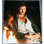 Harrison Ford Autograph Indiana Jones Signed 14x11 Photo
