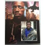 Wesley Snipes Autograph Signed 20x16 Display