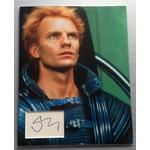 Sting Autograph Signed 14x11 Display